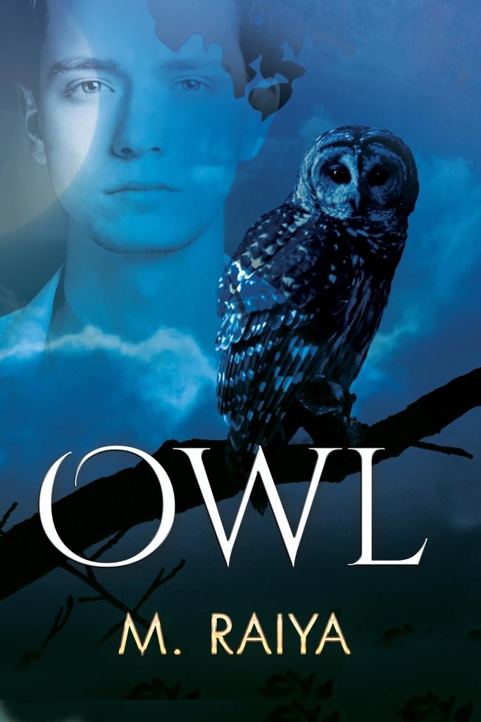 OWLFS_v1